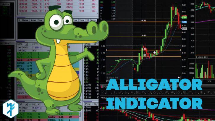Alligator Indicator